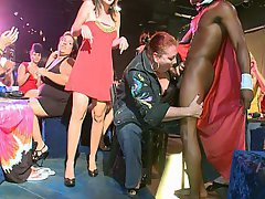 Amateur MILF Party Reality